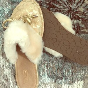 Coach Fur Slippers, House Shoes
